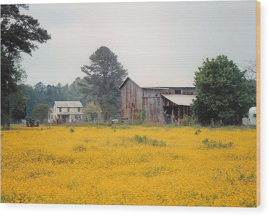 Out In The Country Wood Print by Robert Boyette