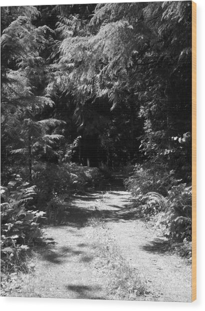 Out Of The Into The Dark Bw Wood Print by Ken Day