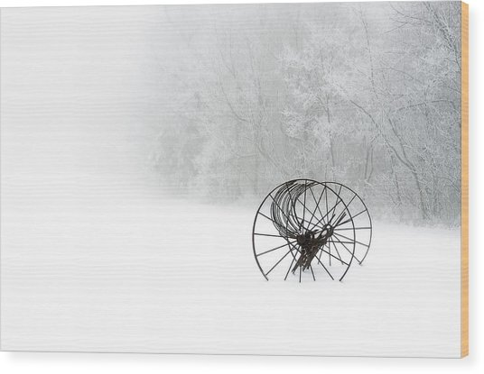 Out Of The Mist A Forgotten Era 2014 Wood Print