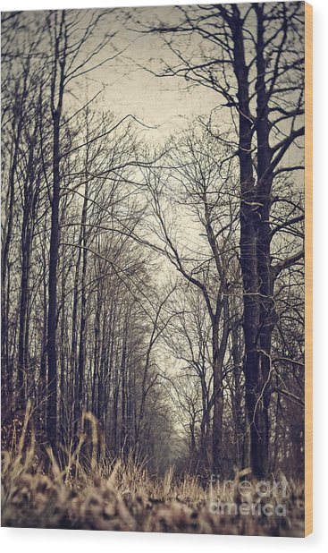 Out Of The Soil - Into The Forest Wood Print