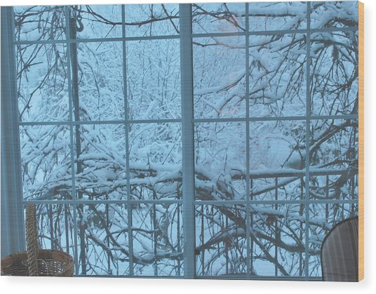 Out The Window Wood Print by Peter Williams