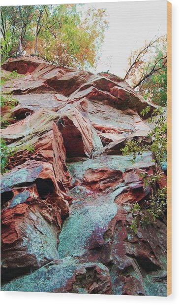 Outcrop At Wildcat Den Wood Print