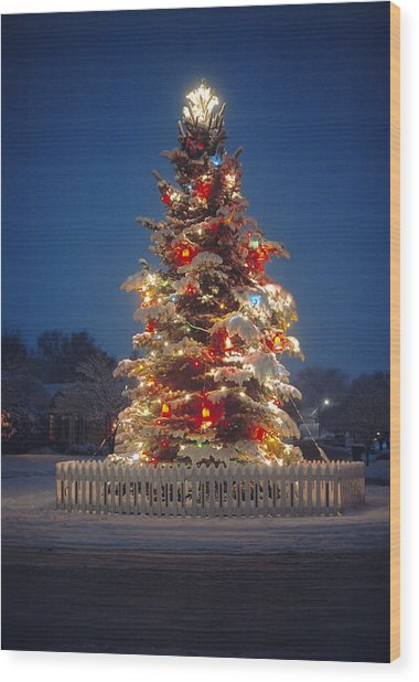cheaper b2b7d fe2c7 Outdoor Christmas Tree by Douglas Pulsipher
