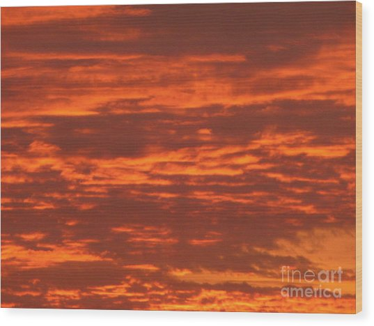 Outrageous Orange Sunrise Wood Print
