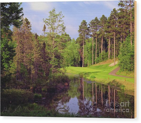 Over The Pond Wood Print