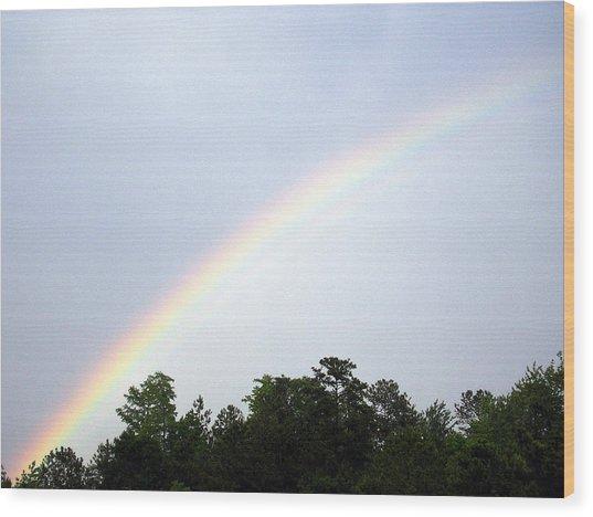 Over The Rainbow Wood Print by Tina Antoniades