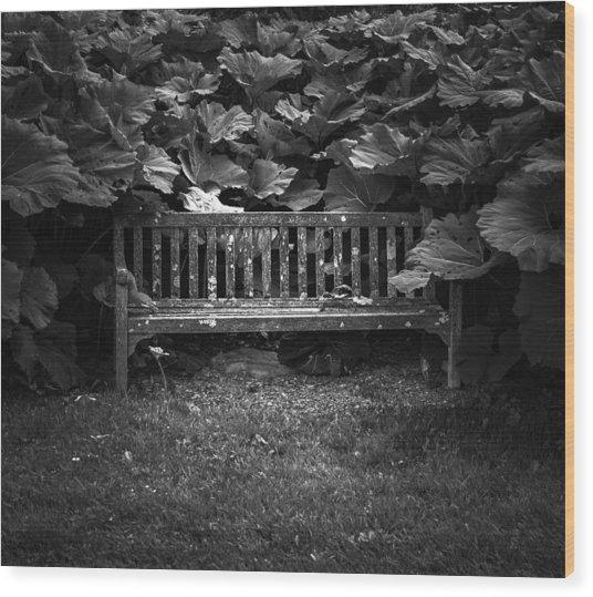 Overgrown Wood Print