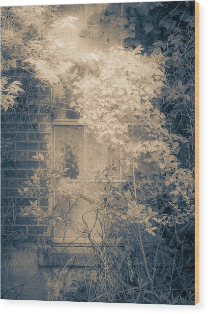Overgrowth On Abandoned Pumping Station Wood Print