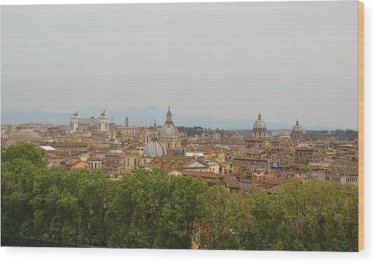 Overlooking Rome Wood Print by JAMART Photography