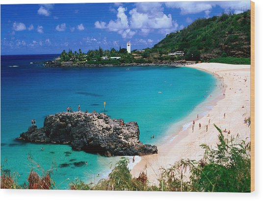 Overview Of Waimea Bay On The North Shore, Waimea, United States Of America Wood Print by Ann Cecil