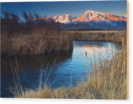 Owens River Sunrise Wood Print by Nolan Nitschke