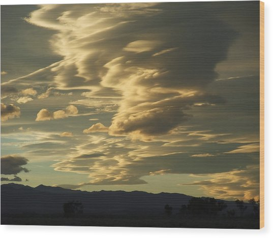 Owens Valley Evening Wood Print by Alpha Pup