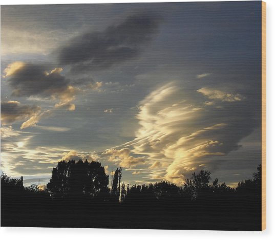 Owens Valley Sunset 2 Wood Print by Lea Belgarde