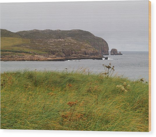Owey Island Wood Print