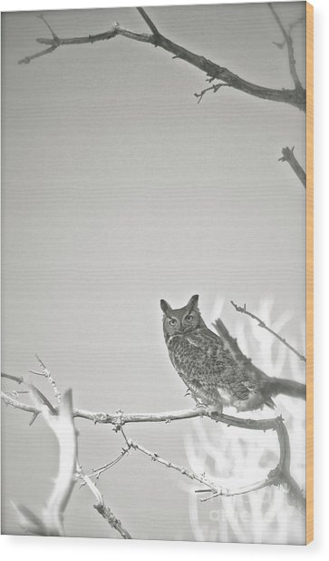 Owl Be Seeing You Wood Print