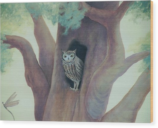 Owl In Tree Wood Print