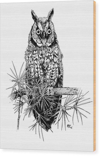 owl Wood Print by Stephen Taylor