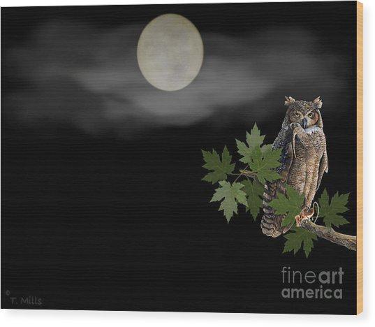 Owl Wood Print by Terri Mills