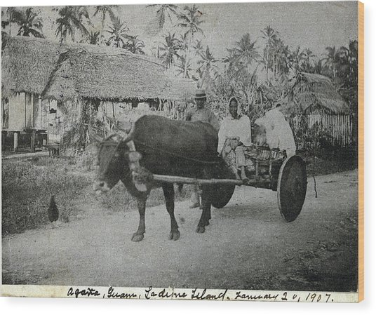 Ox Cart Guam 1907 Wood Print
