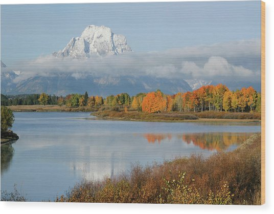 Wood Print featuring the photograph Oxbow Bend  by Wesley Aston
