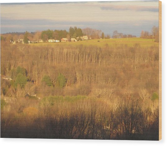 Oxford Sunglow Wood Print by Marcia Crispino