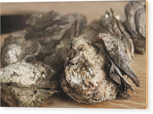 Oyster Roast Wood Print