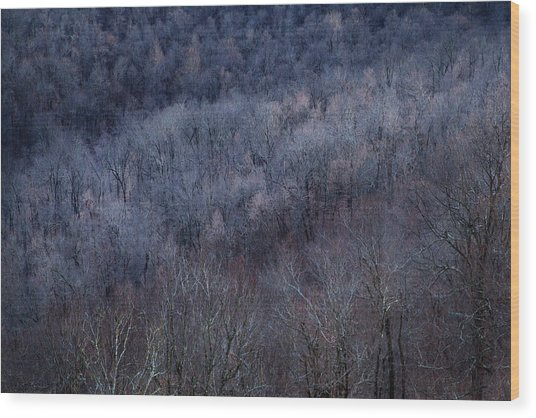 Ozark Trees #3 Wood Print