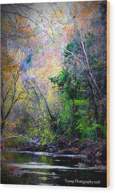 Ozarks Fall Wood Print
