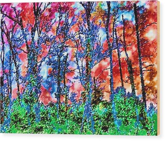 p1050894s Kancamagus on Fire Wood Print by Ed Immar