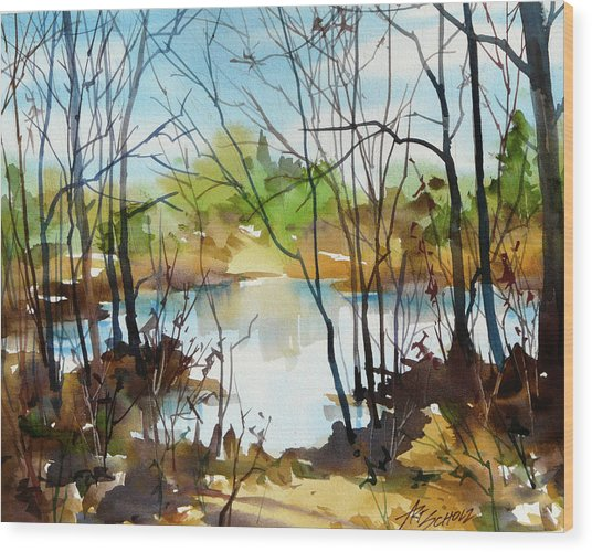 Sparkle Pond Wood Print by Art Scholz