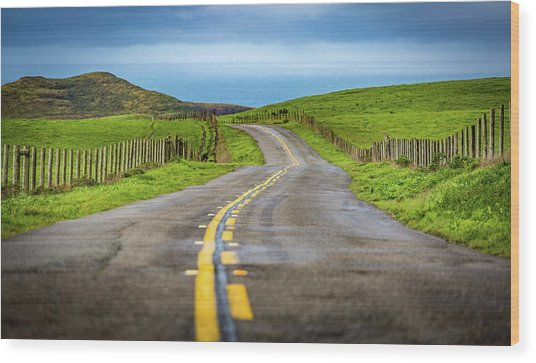 Pacific Coast Road To Tomales Bay Wood Print