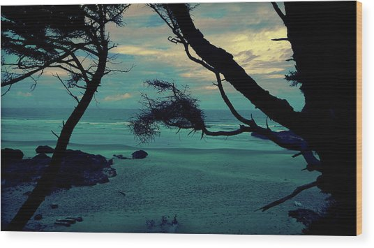 Wood Print featuring the photograph Pacific Paradise by Pacific Northwest Imagery