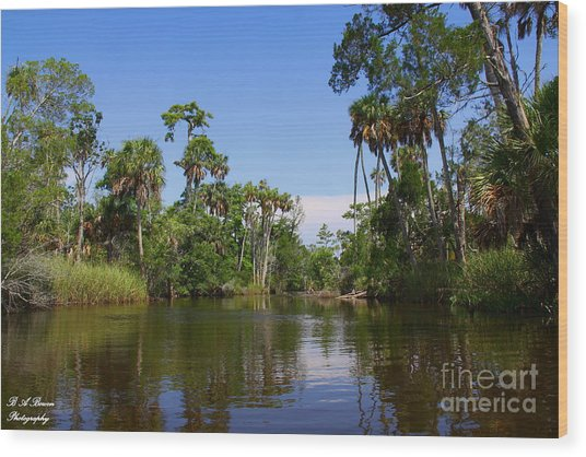 Paddling Otter Creek Wood Print