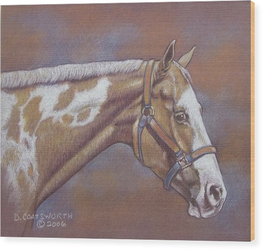 Paint Horse Wood Print by Dorothy Coatsworth