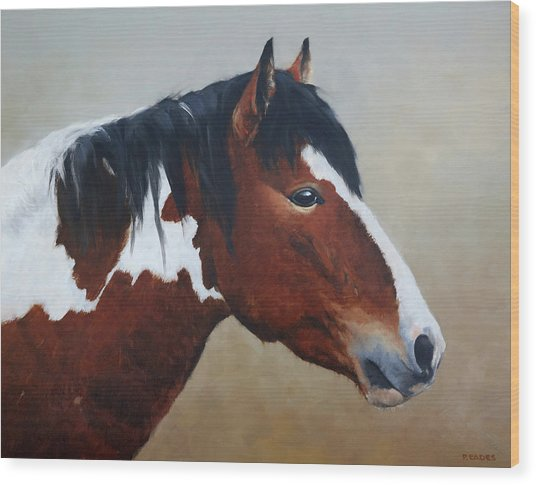 Paint Stallion Wood Print