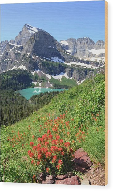 Paintbrush Above Grinnell Lake Wood Print