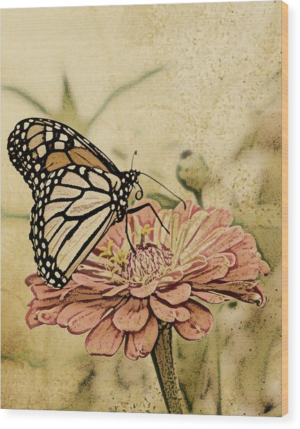 Painted Beauty Wood Print by Sally Engdahl