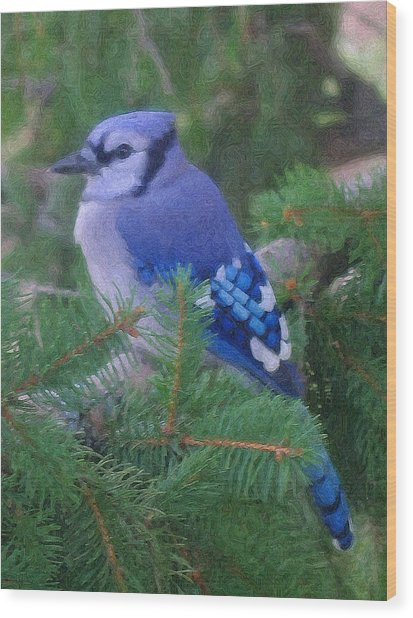 Painted Blue Jay  Wood Print by Thomas  MacPherson Jr