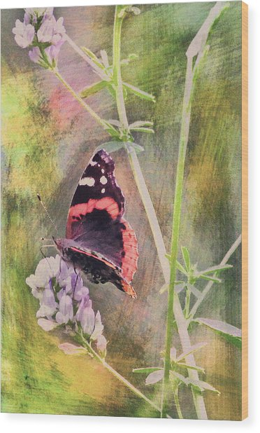 Painted Butterfly Wood Print by James Steele