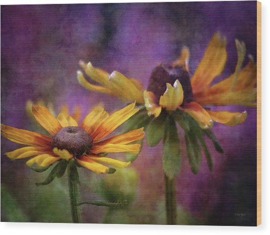 Painted By The Sun 2757 Idp_2 Wood Print