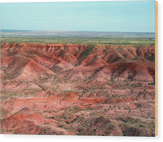 Painted Desert 3 Wood Print by Jeanette Oberholtzer
