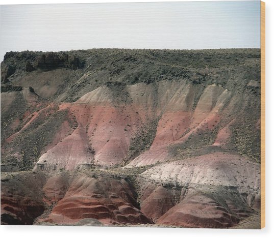 Painted Desert  Arizona Wood Print by Jeanette Oberholtzer