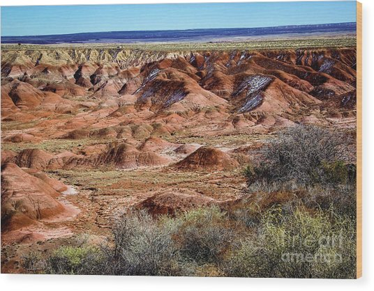 Painted Desert In Winter Wood Print