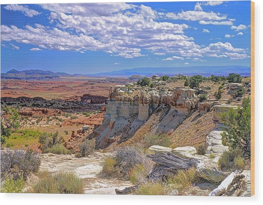 Painted Desert Of Utah Wood Print