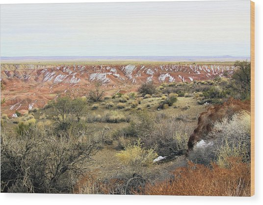 Painted Desert Winter 0571 Wood Print by Sharon Broucek