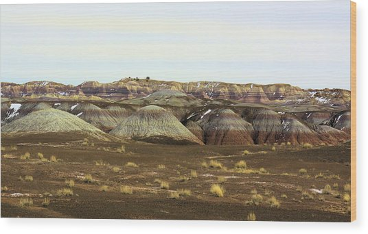 Painted Desert Winter 0576 Wood Print by Sharon Broucek