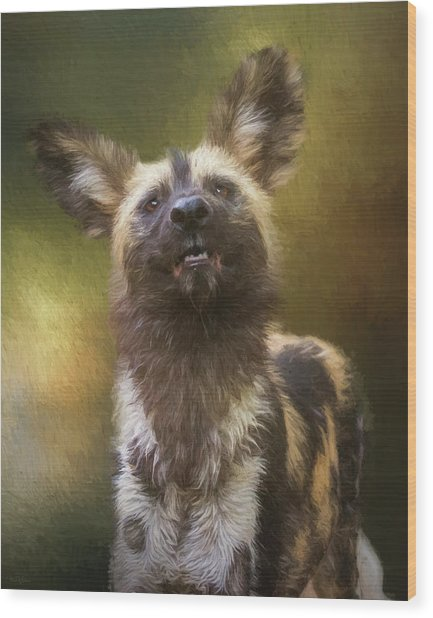 Painted Dog Portrait Wood Print