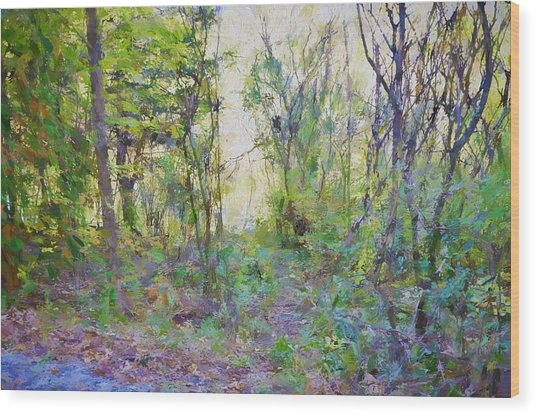 Painted Forrest Wood Print