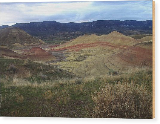 Painted Hills 1 Wood Print