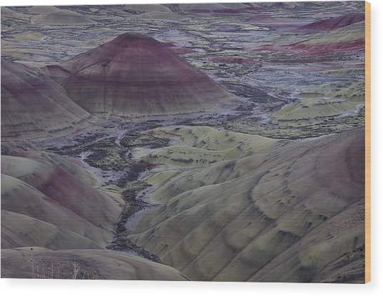 Painted Hills 2 Wood Print